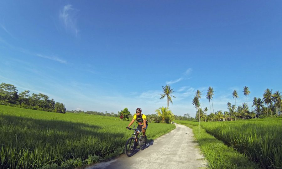 MTB Cross Country – Margarana to Jatiluwih
