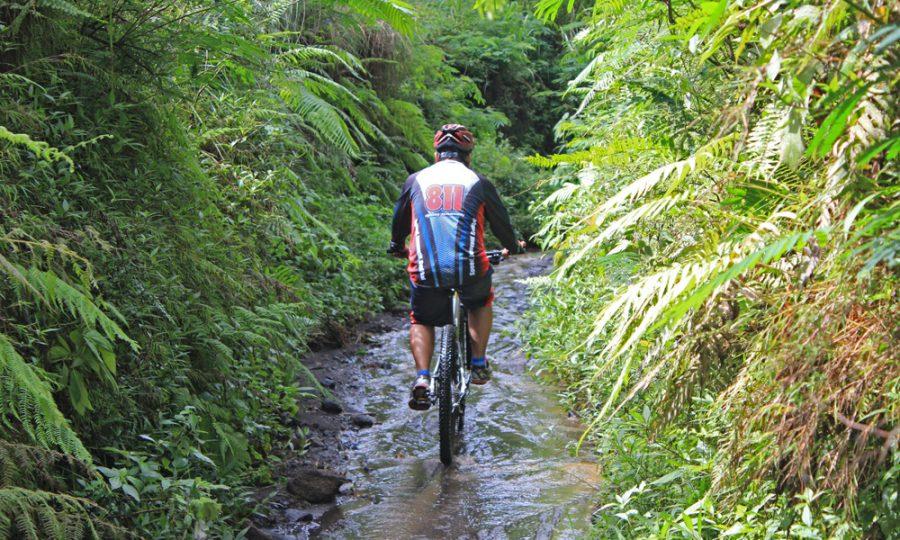 Apakah anda bersepeda dengan keseimbangan bagus?